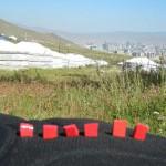 Ulaanbaatar1-1024x768