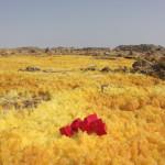davide-caisutti-etiopia-2
