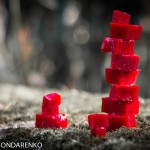 natalia-bondarenko-tessere-rosse3-1024x661