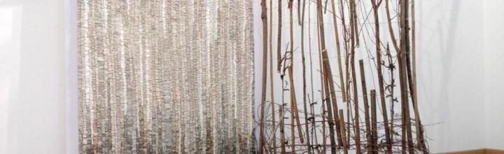 Mosaico e natura con Stefano Jus